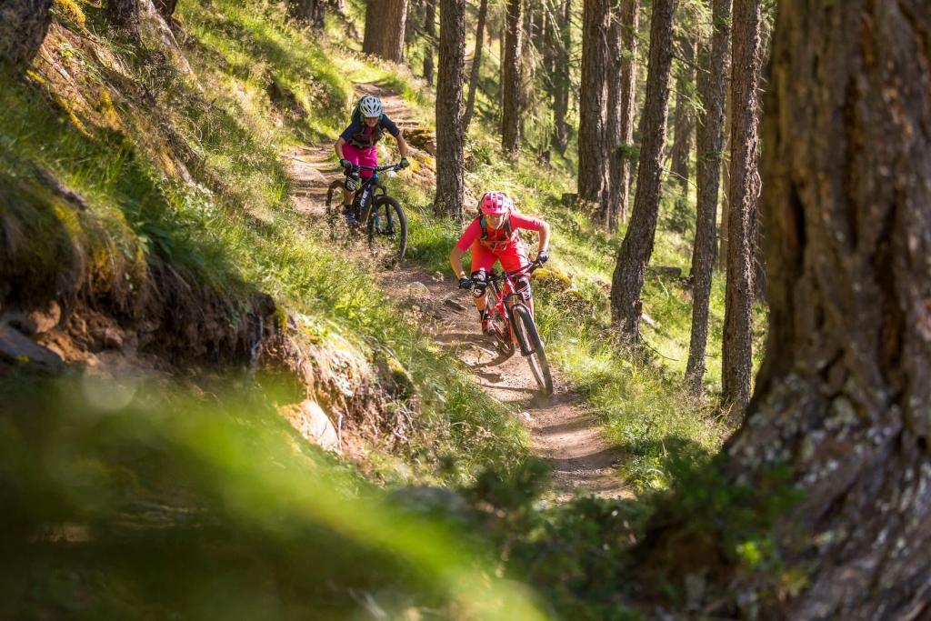 Singletrail durch den Wald - Leiterberg Trail © WOM Medien