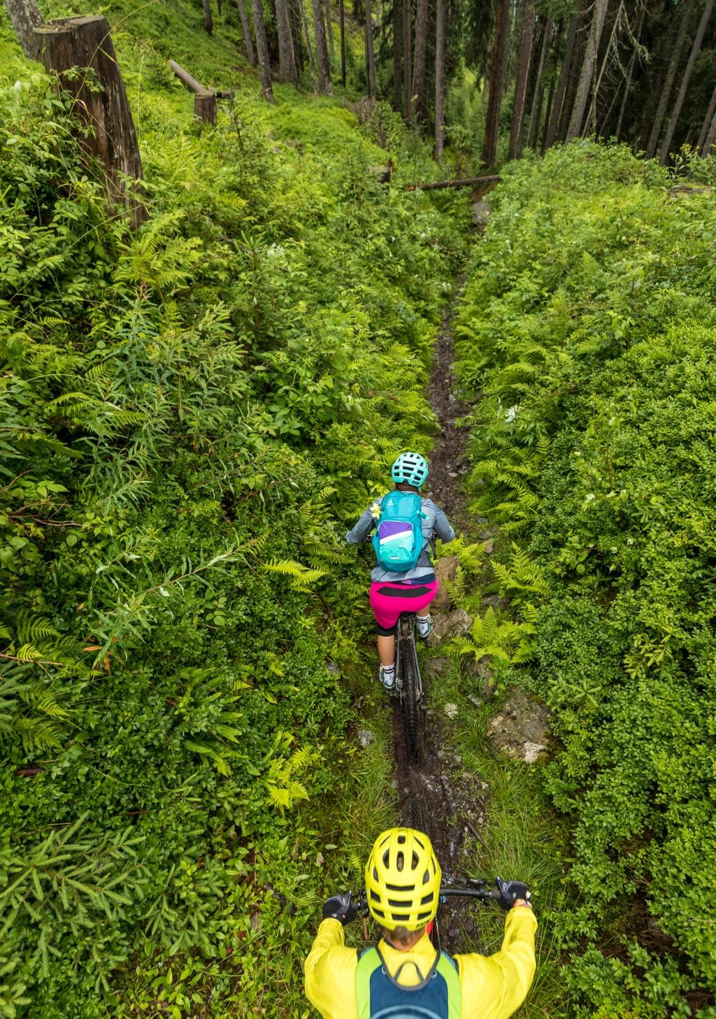 Singletrail durch den Wald - Matzalm Trail © WOM Medien